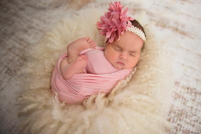 Winter | Newborn
