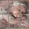 DSC_8241 babythruthewindow