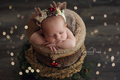 Neugeborene/Newborn