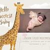 CuteGiraffeBirthAnnouncement