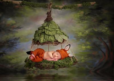 Hayden Jungle Swing