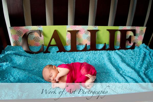 Callie's Newborn Portraits