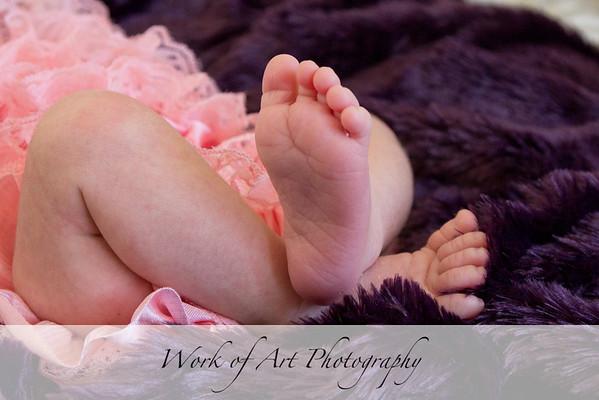 Hayden's Newborn Portraits