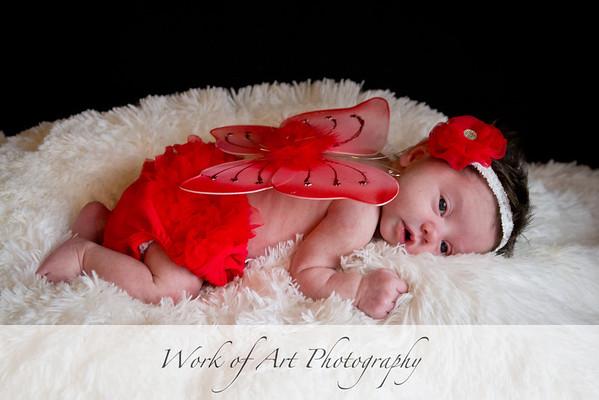 Payton Sue's Newborn Portraits