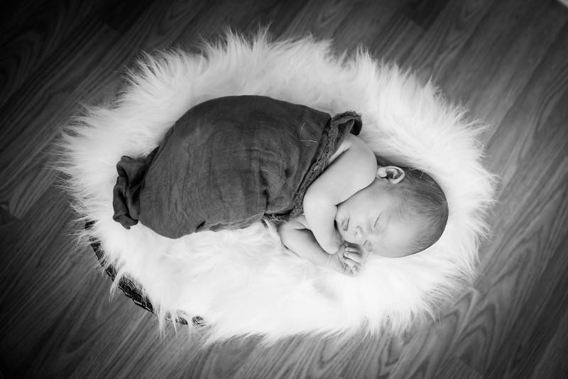 Baby Krimm