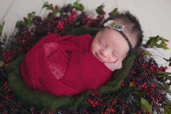 Jordan Escobar Newborn Session
