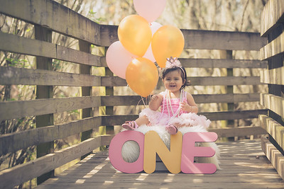 Daniella 1st Birthday portrait Session