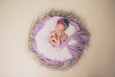Naomi's Newborn Portrait Session