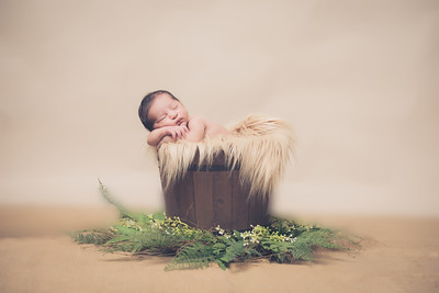 Prettie Roys Newborn Session