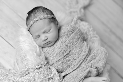 Abigail Newborn-5
