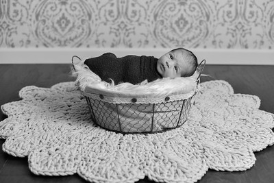 Abigail Newborn-29