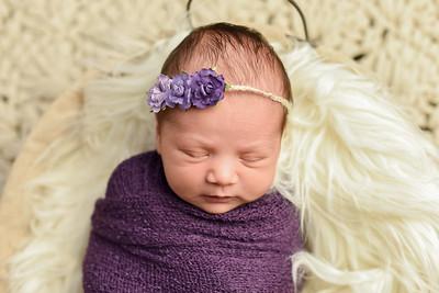 Abigail Newborn-36