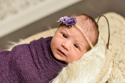 Abigail Newborn-31