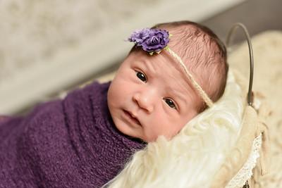 Abigail Newborn-33