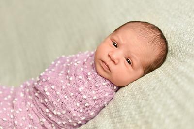 Abigail Newborn-46