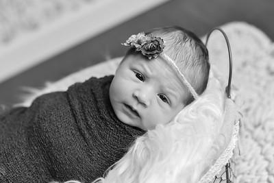 Abigail Newborn-32
