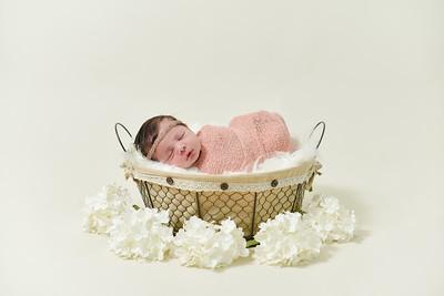 Adalynn Newborn-1