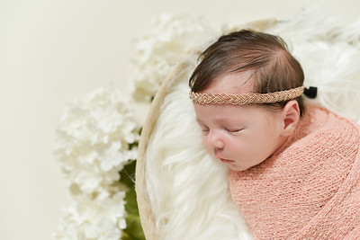 Adalynn Newborn-2