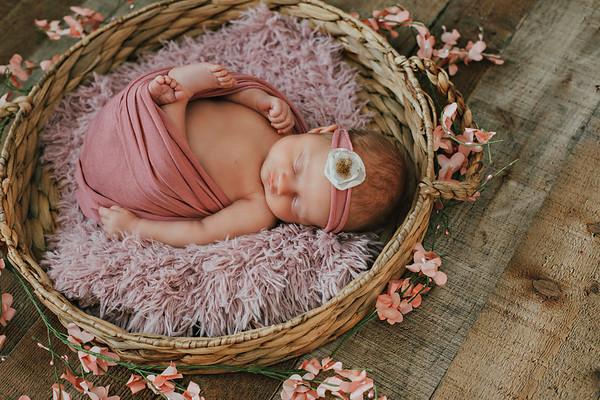Alivia newborn mini