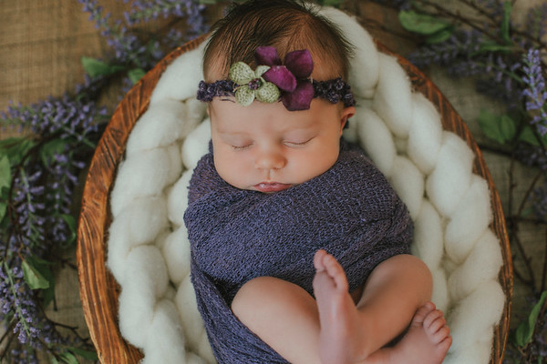 Brielle Newborn