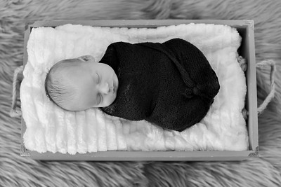 Cameron Newborn-27