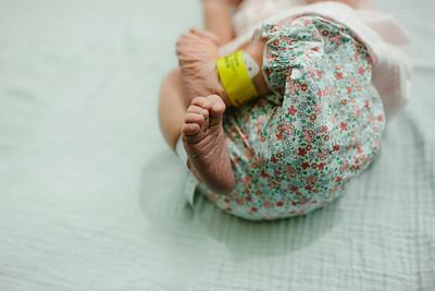 Cecilia Newborn -047
