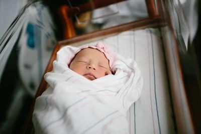 Cecilia Newborn -019