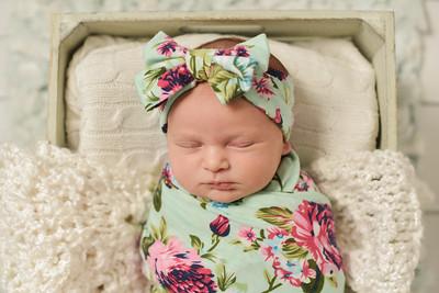 Newborn Charlotte-26