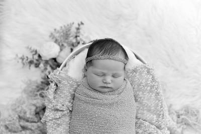 Collins Newborn-39