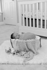 Collins Newborn-42
