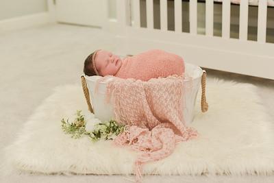 Collins Newborn-41
