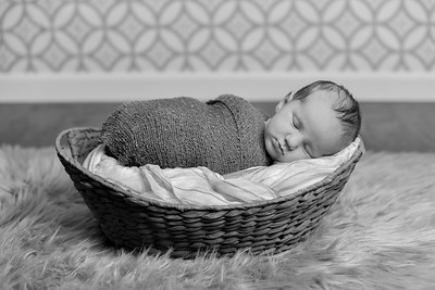 Cooper Newborn-22