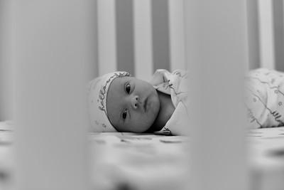 Douglas Newborn-5