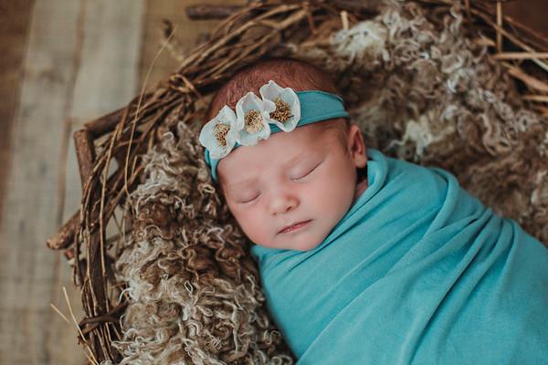 Eleanor Newborn 2017