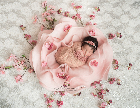 Elissa's Newborn Gallery /  8 Days New