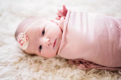 Elloise~newborn 2018