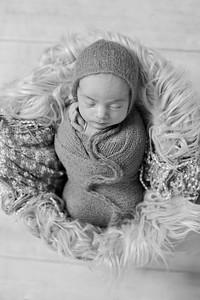 Finn Newborn-44