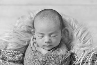 Finn Newborn-41