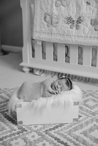 Hannah Newborn-5