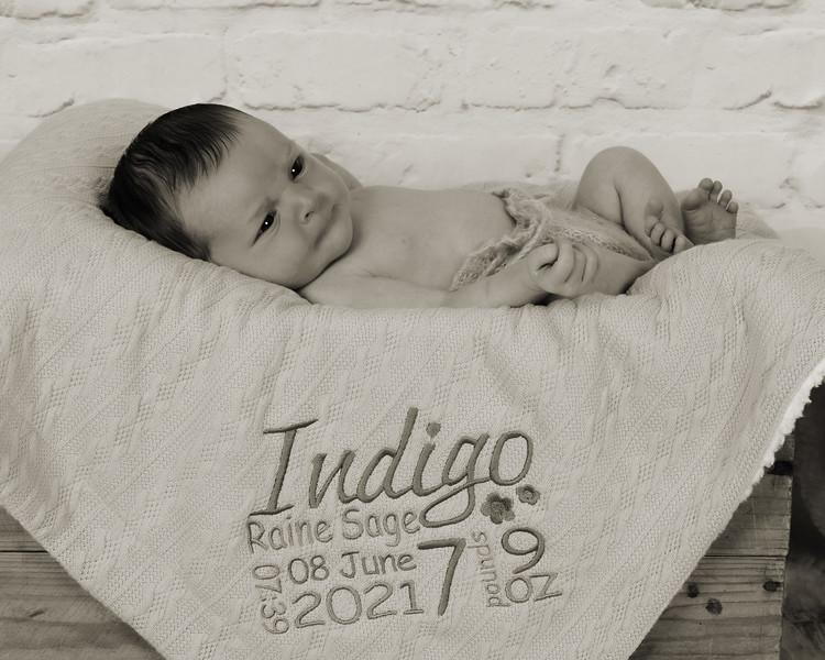 Indigo_019 copy