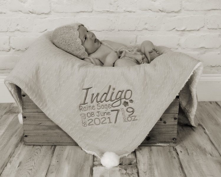 Indigo_024 copy