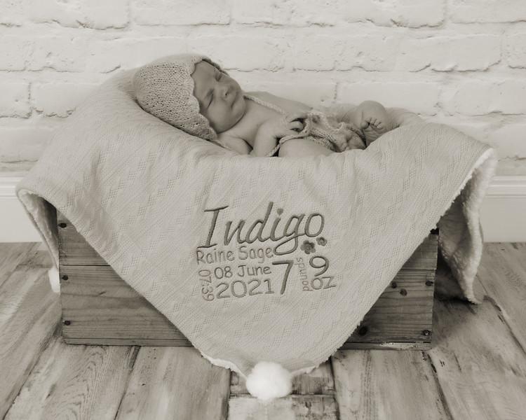 Indigo_023 copy