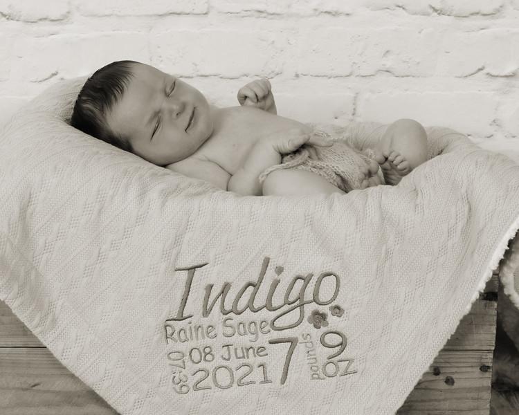 Indigo_022 copy