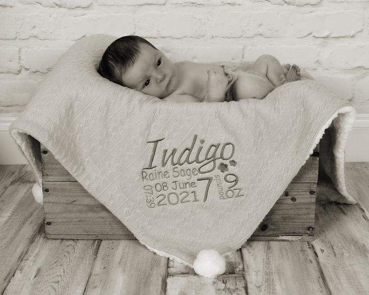 Indigo_018 copy