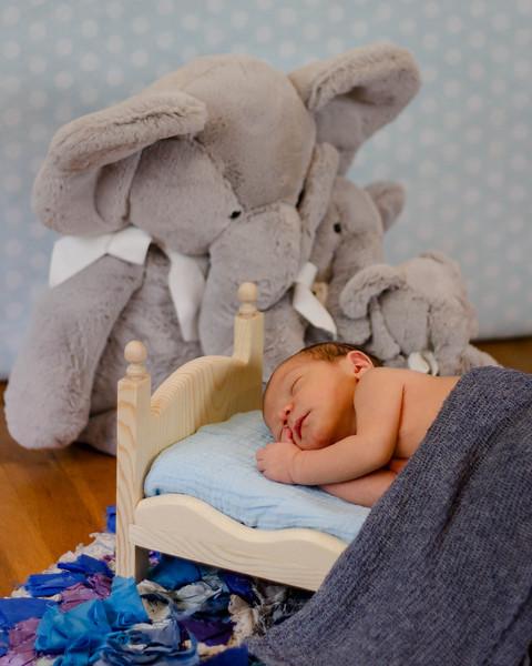 Tewksbury MA Newborn Photographer; Tewksbury MA Child Photographer; Tewksbury MA family photographer