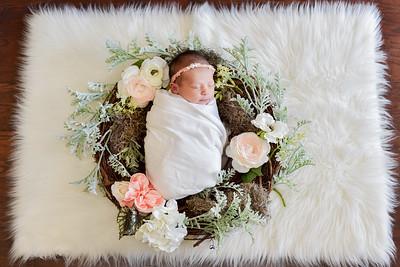 Journey Newborn-13