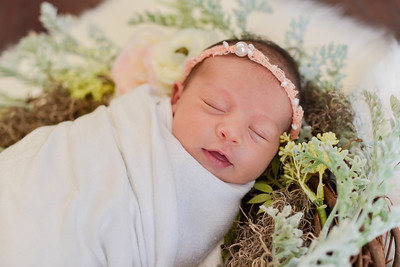 Journey Newborn-17