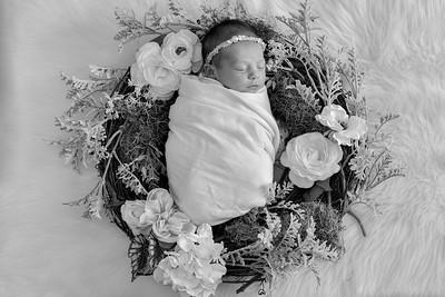 Journey Newborn-15