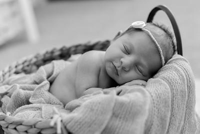 Journey Newborn-20
