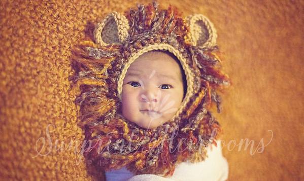 Kawelo Newborn